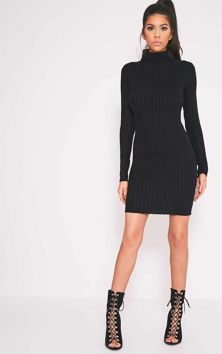 Bianca Black Ribbed Roll Neck Knitted Dress 5