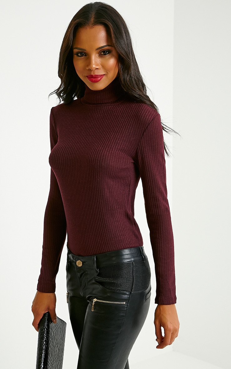 Rica Mulberry Ribbed Roll Neck Top 4