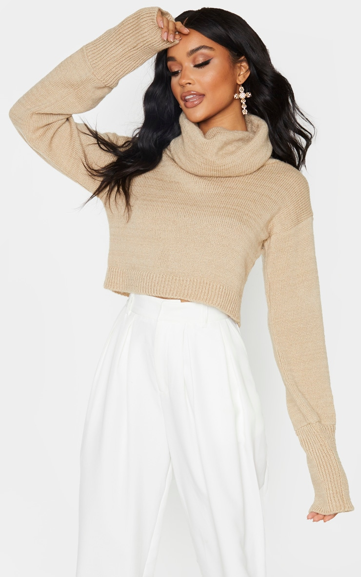 Camel Roll Neck Cropped Jumper 1