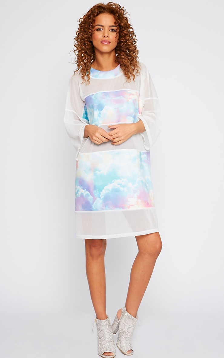 Yakira Cloud Print Mesh Panel Dress 1