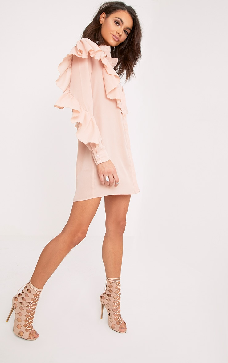 Jezmeena Dusty Pink Frill Detail Shirt Dress 4