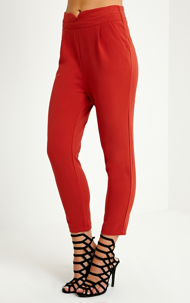 Neri Rust Notch Front Trousers 3