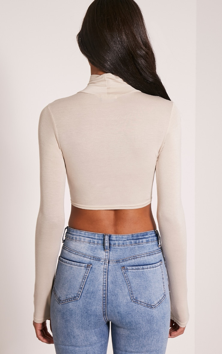 Basic Stone Roll Neck Crop Top 2