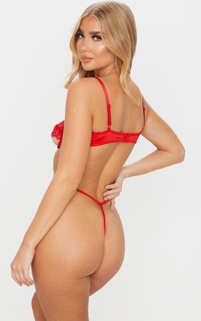 Red Lace Panel Underwired Lingerie Set