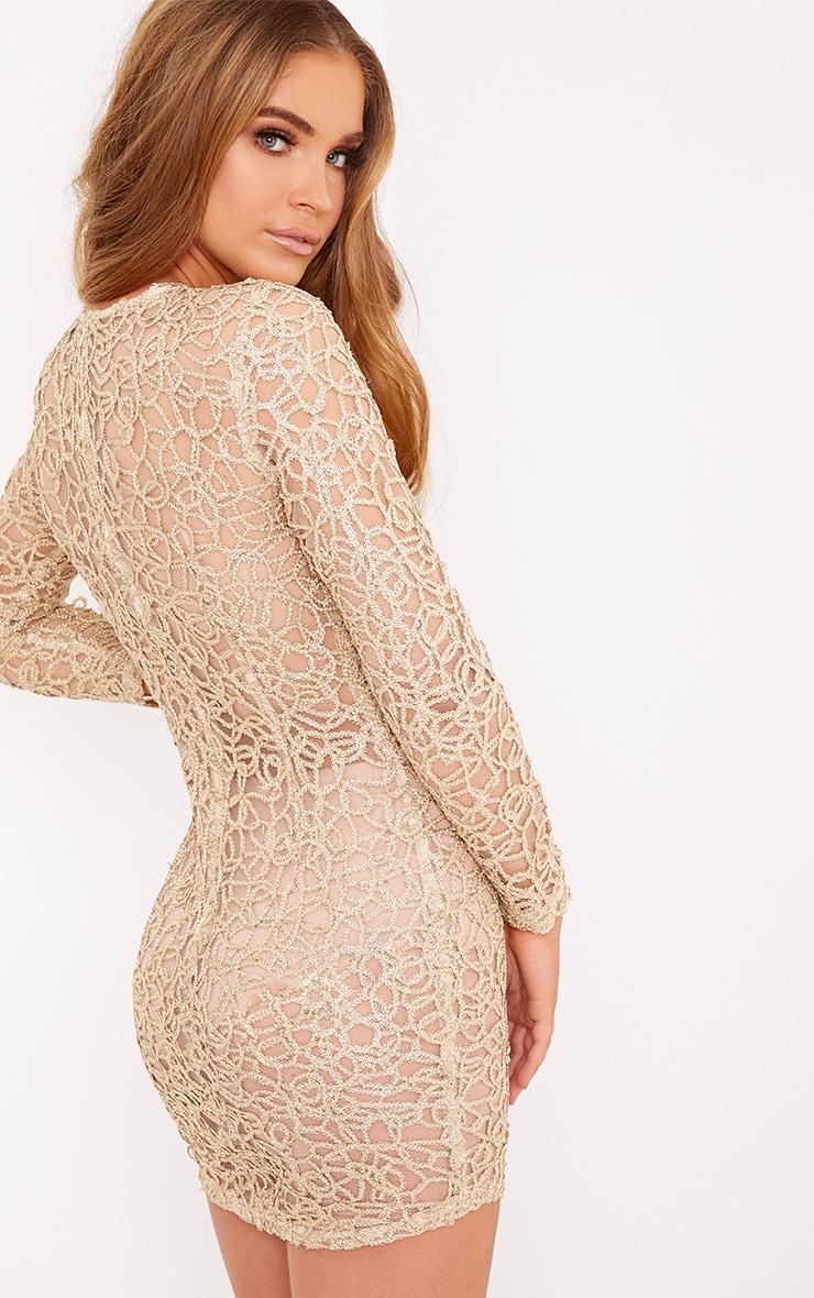 Elise Gold Detail Mesh Bodycon Dress 2