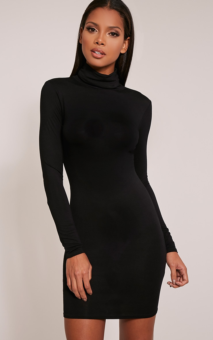aa22516403 Basic Black Roll Neck Bodycon Dress image 1