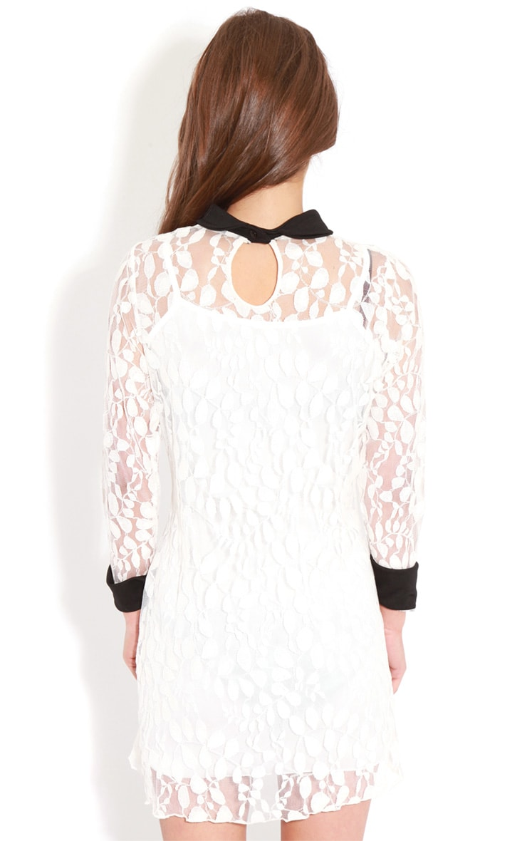 Reese White Lace Collar Dress 2