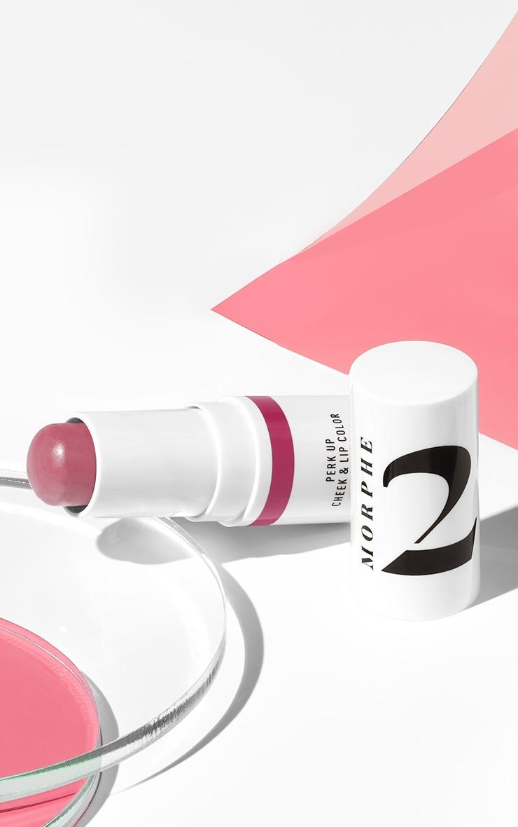 Morphe 2 Perk Up Cheek & Lip Color Berry Dreams 1