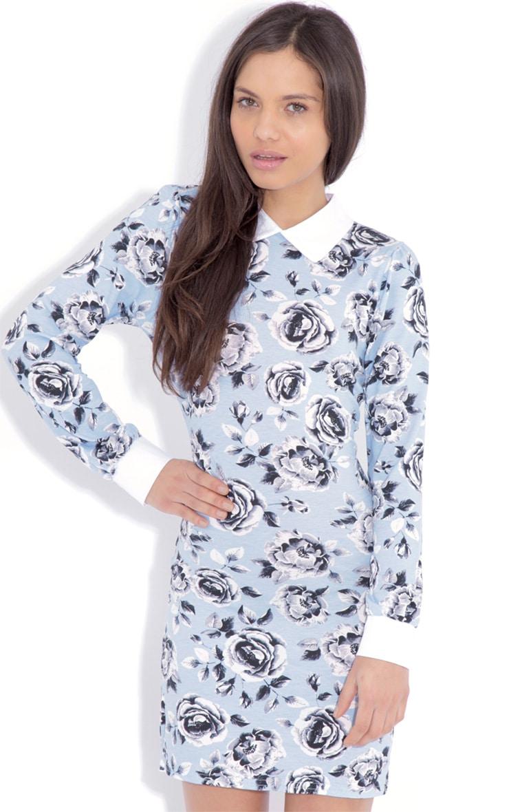 Demi Blue Floral Collar Dress 4