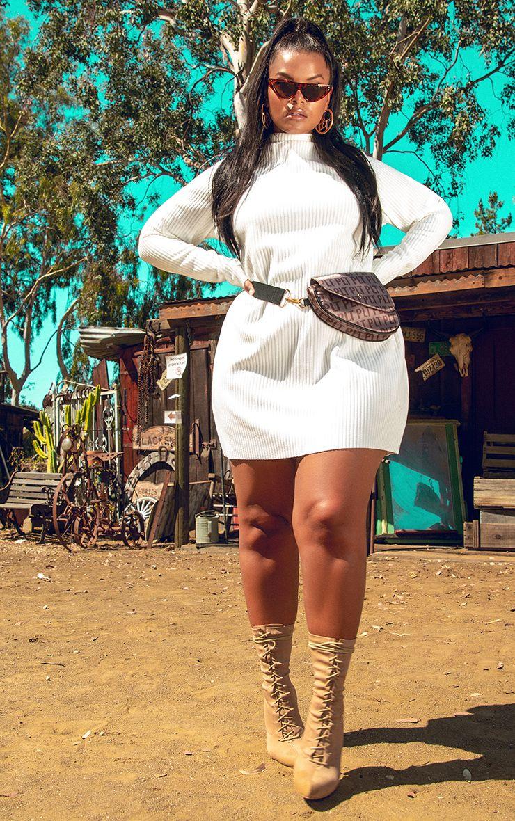 Plus Cream Jumbo Rib High Neck Sweater Dress 1