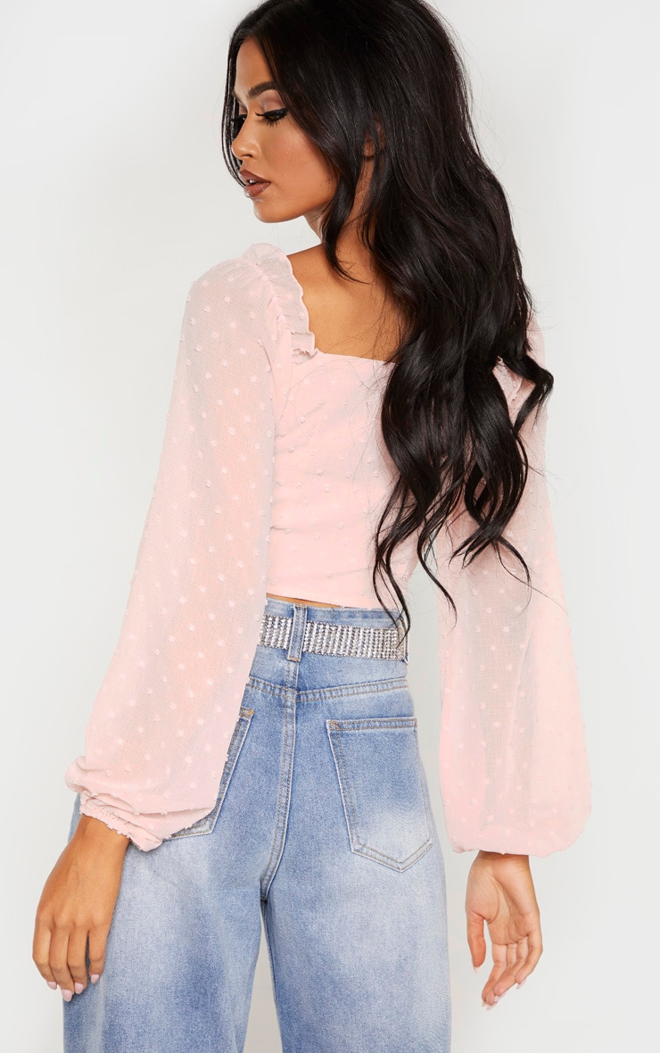 Rose Dobby Mesh Cup Detail Long Sleeve Crop Top 2