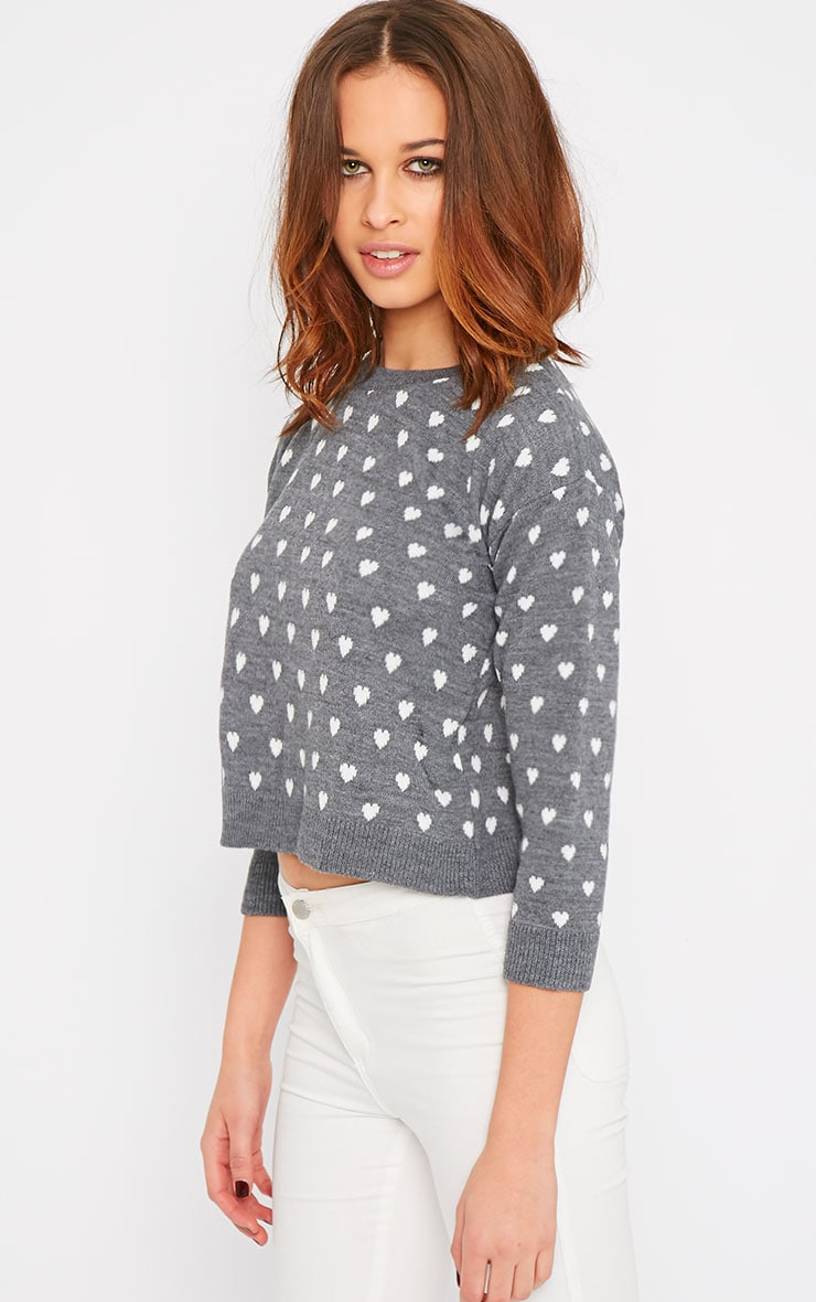 Kyna Grey Heart Print Sweater 4