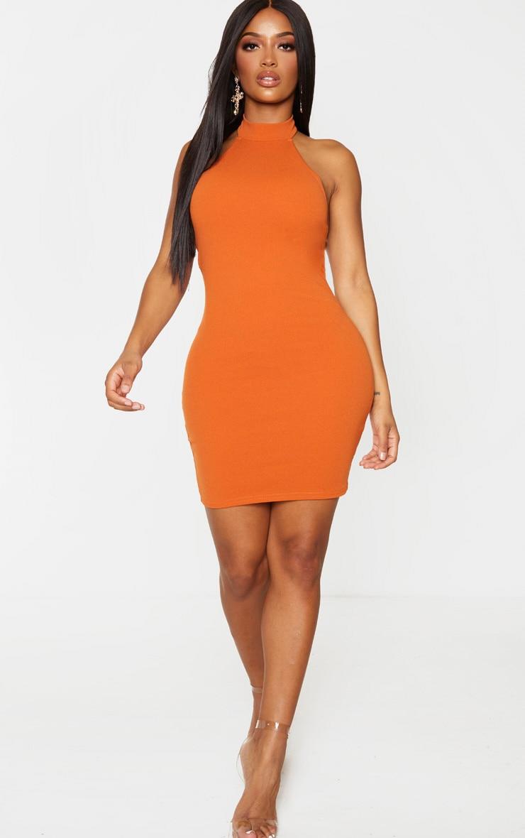 Shape Terracotta Crepe Halterneck Bodycon Dress 3