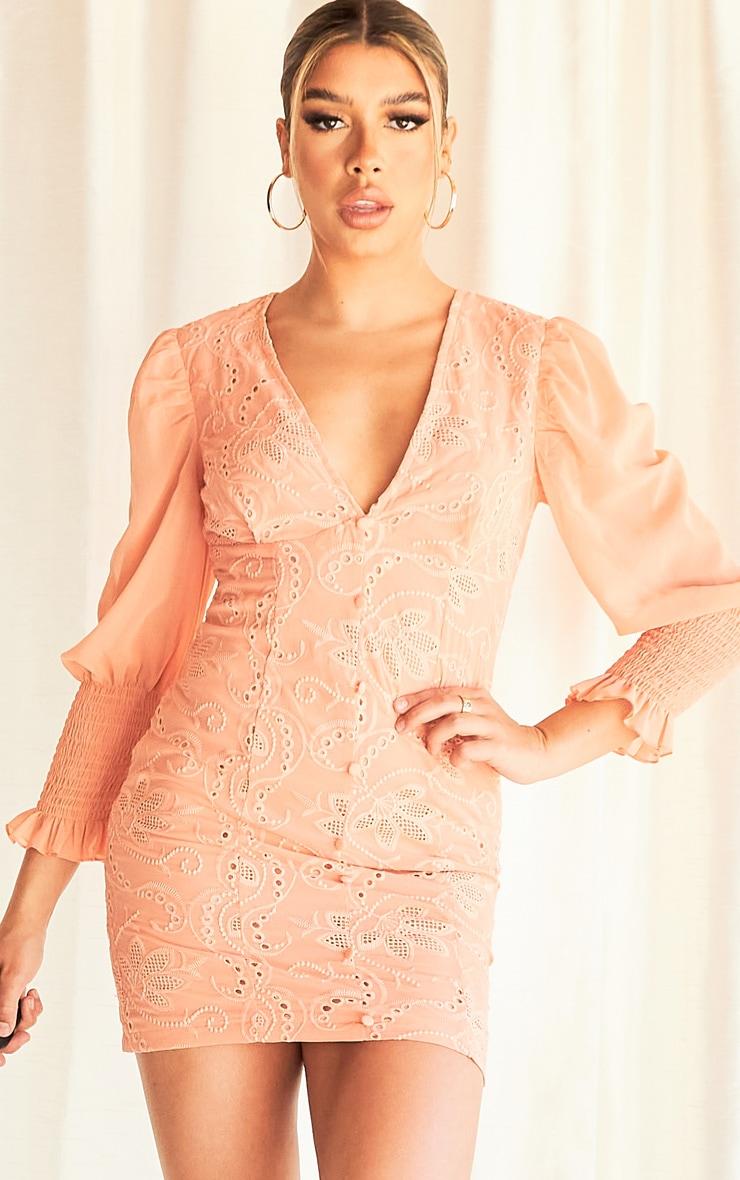 Peach Broderie Anglaise Shirred Sleeve Bodycon Dress 1