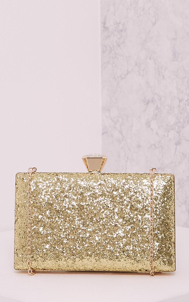 Dinnie Gold Glitter Box Clutch Bag 4