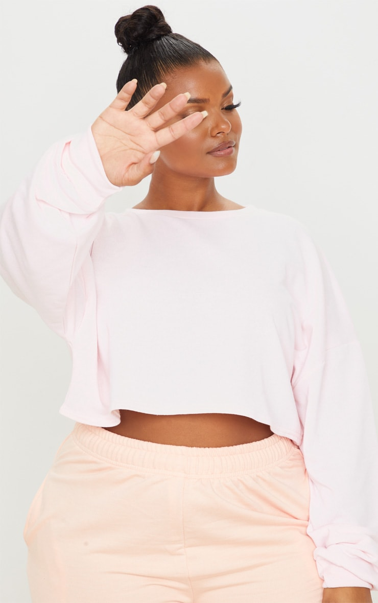 Plus Blush Crop Sweater 6