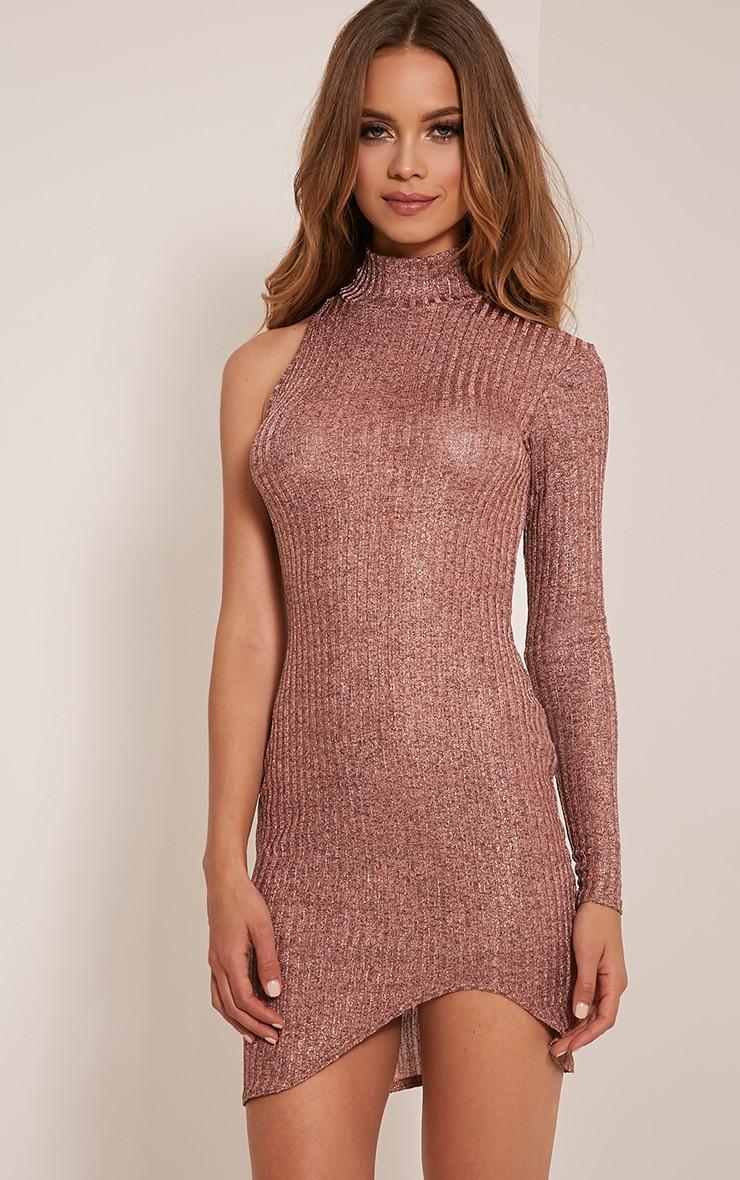 Kerry Rose Gold Metallic High Neck Ribbed Dress 1