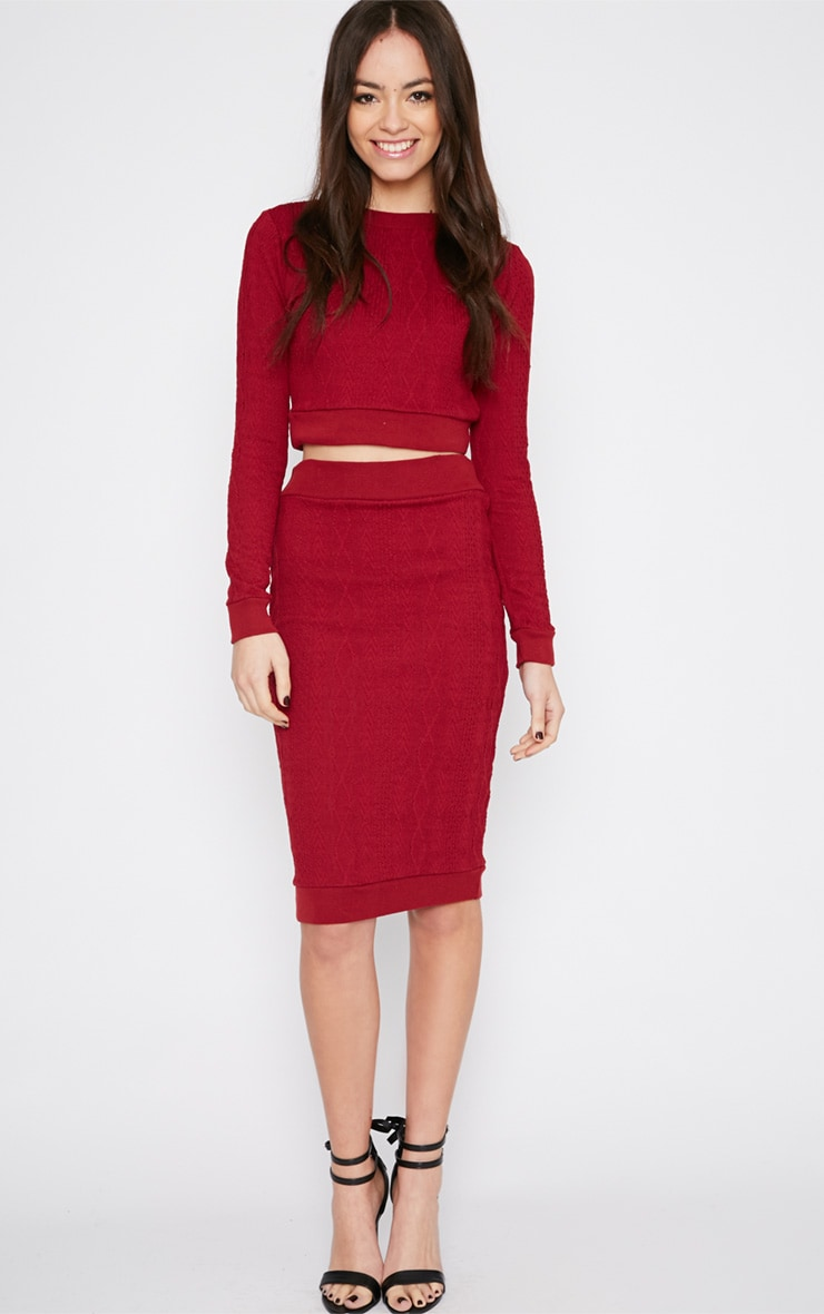 Deni Red Cable Knit Crop Jumper  3
