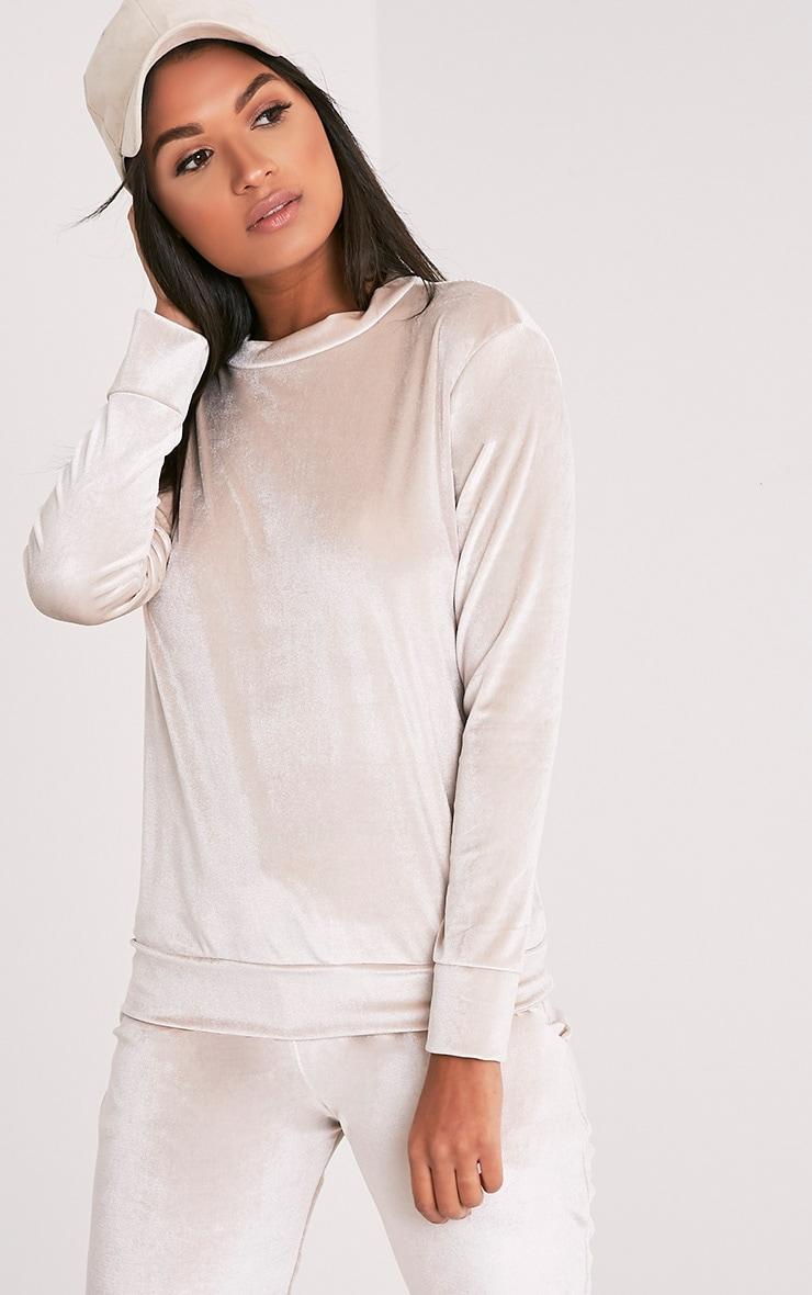 Justinna Stone Velvet sweater 1