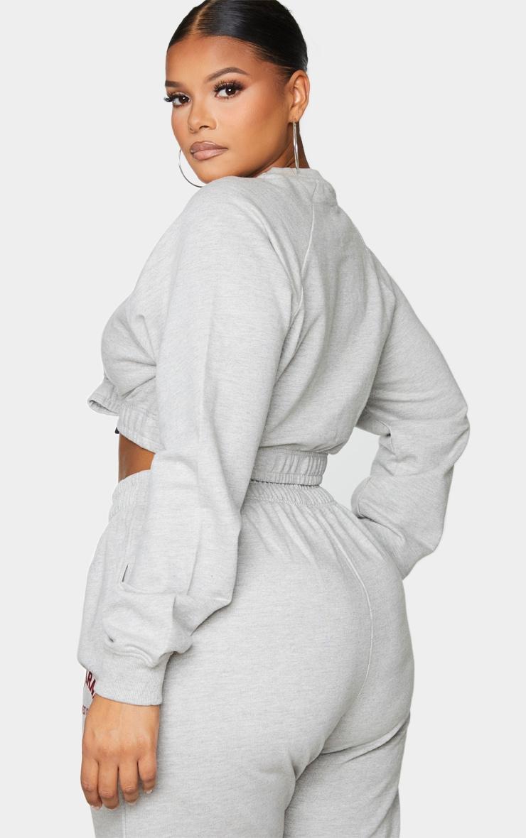Plus Grey California Cropped Sweater 2