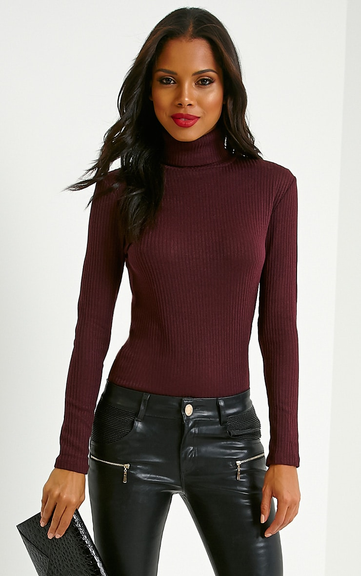 Rica Mulberry Ribbed Roll Neck Top 1