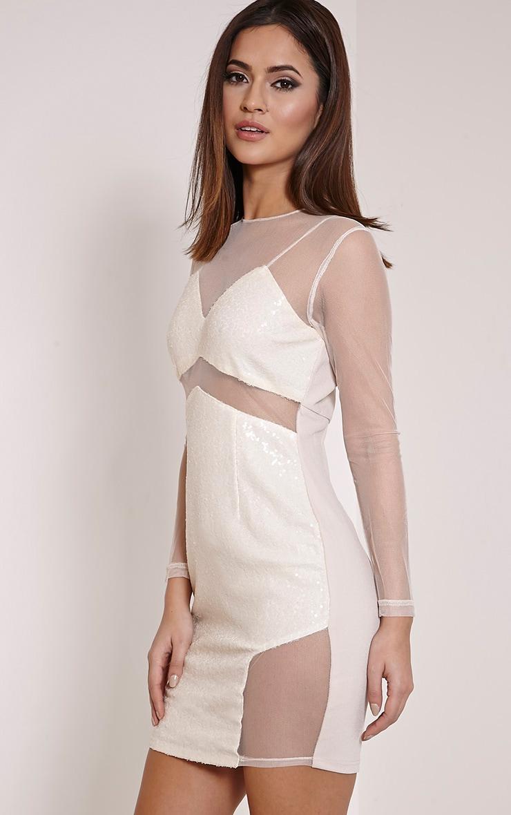 Dakota Nude Sequin Mesh Bodycon Dress 3