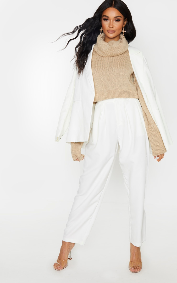 Camel Roll Neck Cropped Jumper 4