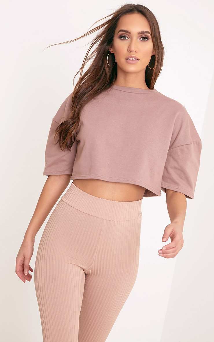 Elna Truffle Boxy Shortsleeve Crop Sweater 1