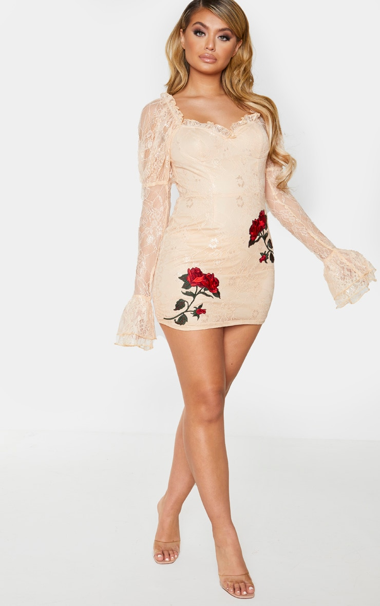 Nude Lace Rose Embroidered Long Sleeve Bodycon Dress 3