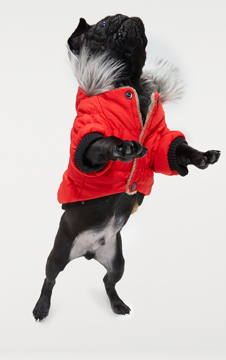 Red Quilted Faux Fur Hood Doggy Coat 2