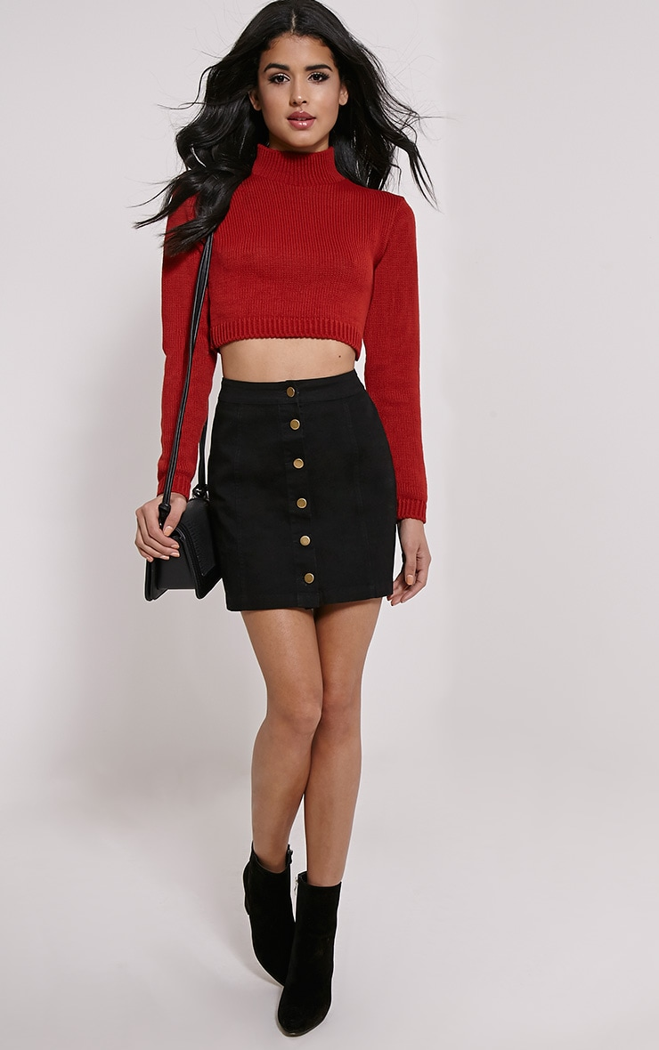 Zuly Rust Cropped Knitted Jumper 3