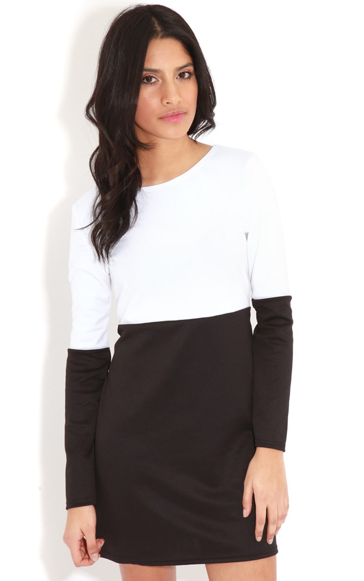 Francie Monochrome Panel Scuba Dress		 1