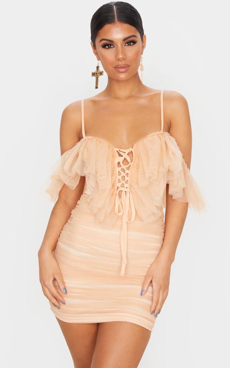 Nude Mesh Ruffle Tie Front Bodycon Dress 1
