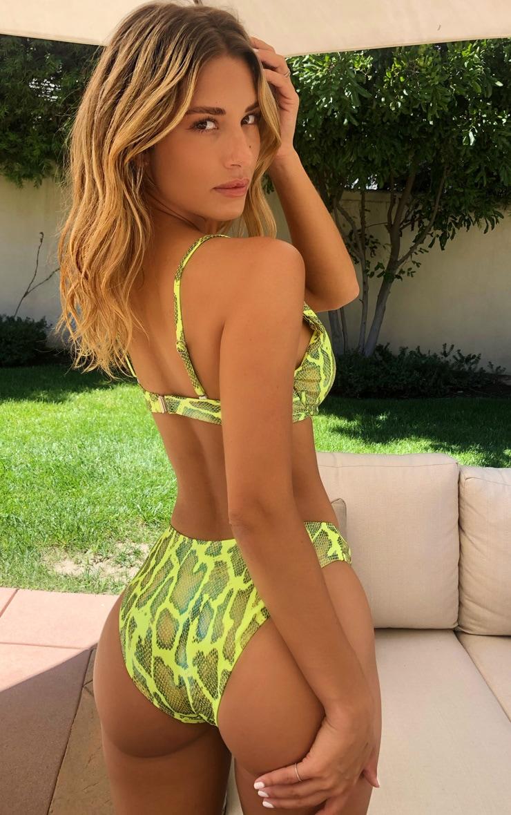 Lime Snake Wet Look High Leg Bikini Bottoms 2