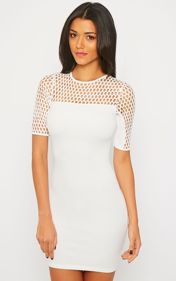 Julienna White Fish Net Insert Dress 5