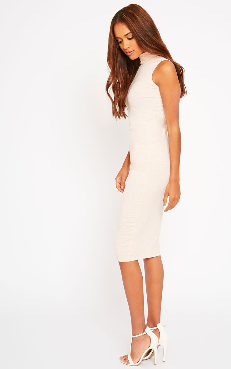 Basic Nude High Neck Dress 4