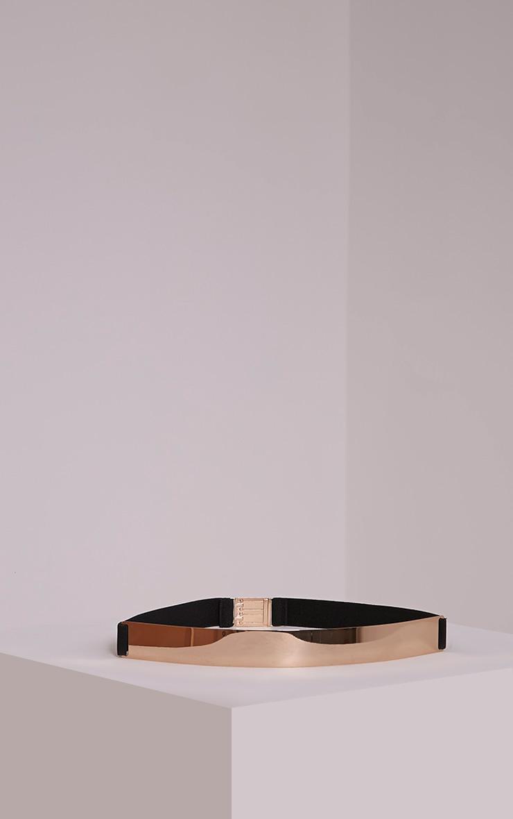 Embla Gold Plate Elasticated Waist Belt 3