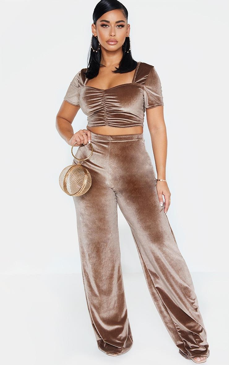 Shape Mocha Velvet Ruched Front Short Sleeve Crop Top 4