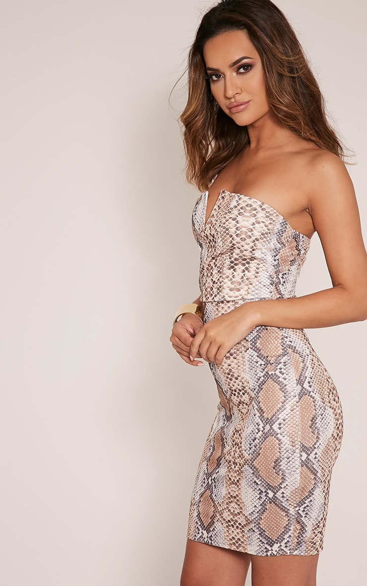 Michelle Taupe Snake Print Bandeau Dress 4