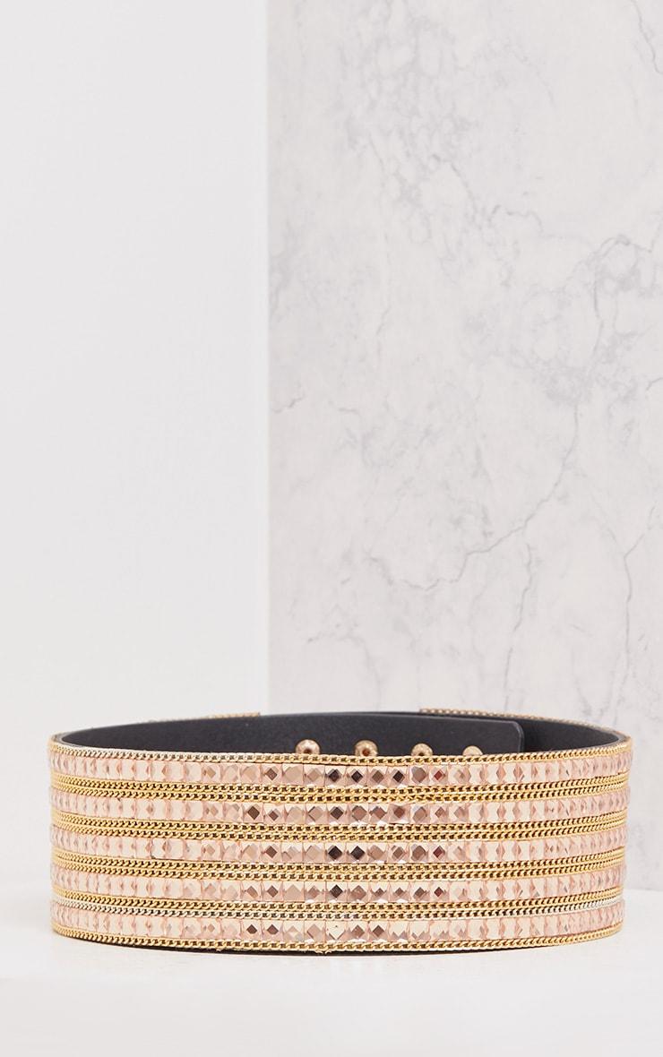 Carmel Rose & Gold Chain Waist Belt 4