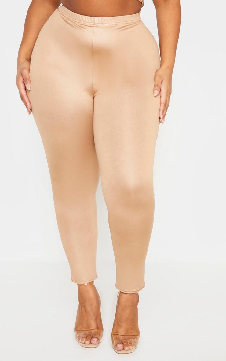 Plus Camel Wet Look Legging 2