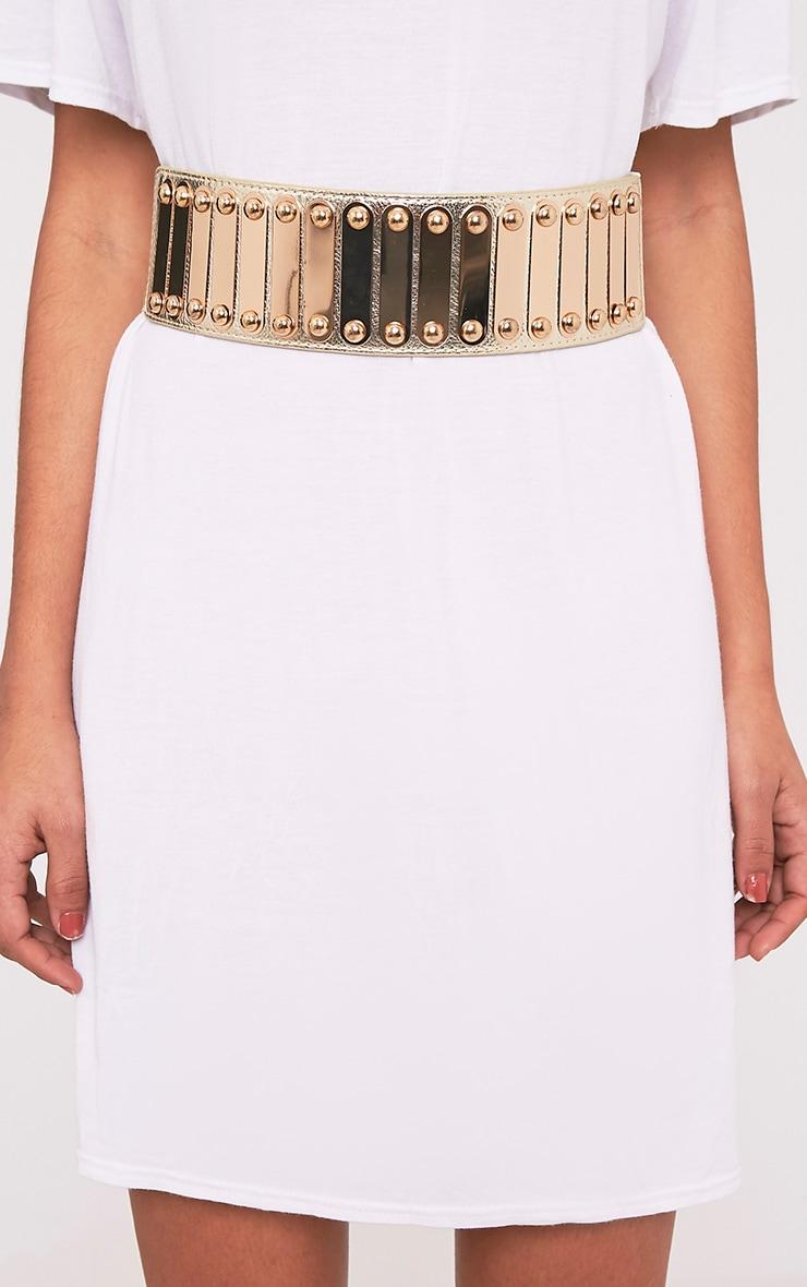 Marea Gold Metal Detail Waist Belt 3