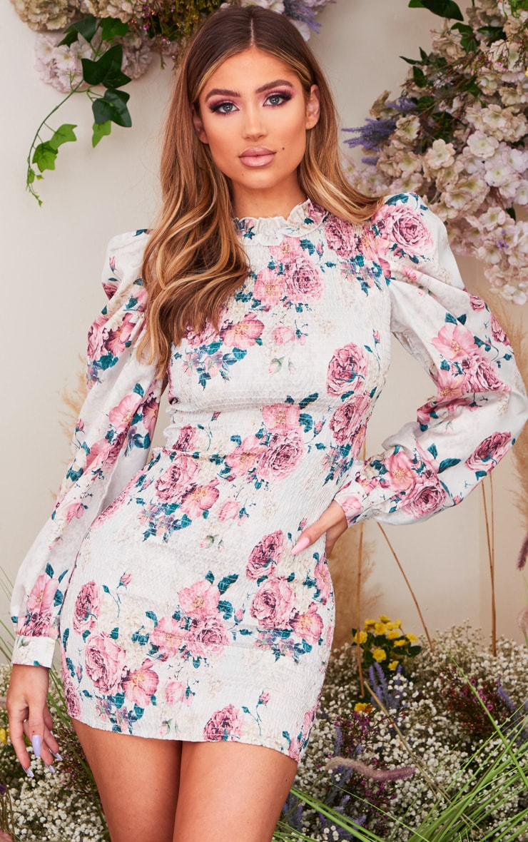 Nude Floral Print Shirred Bodycon Dress 1