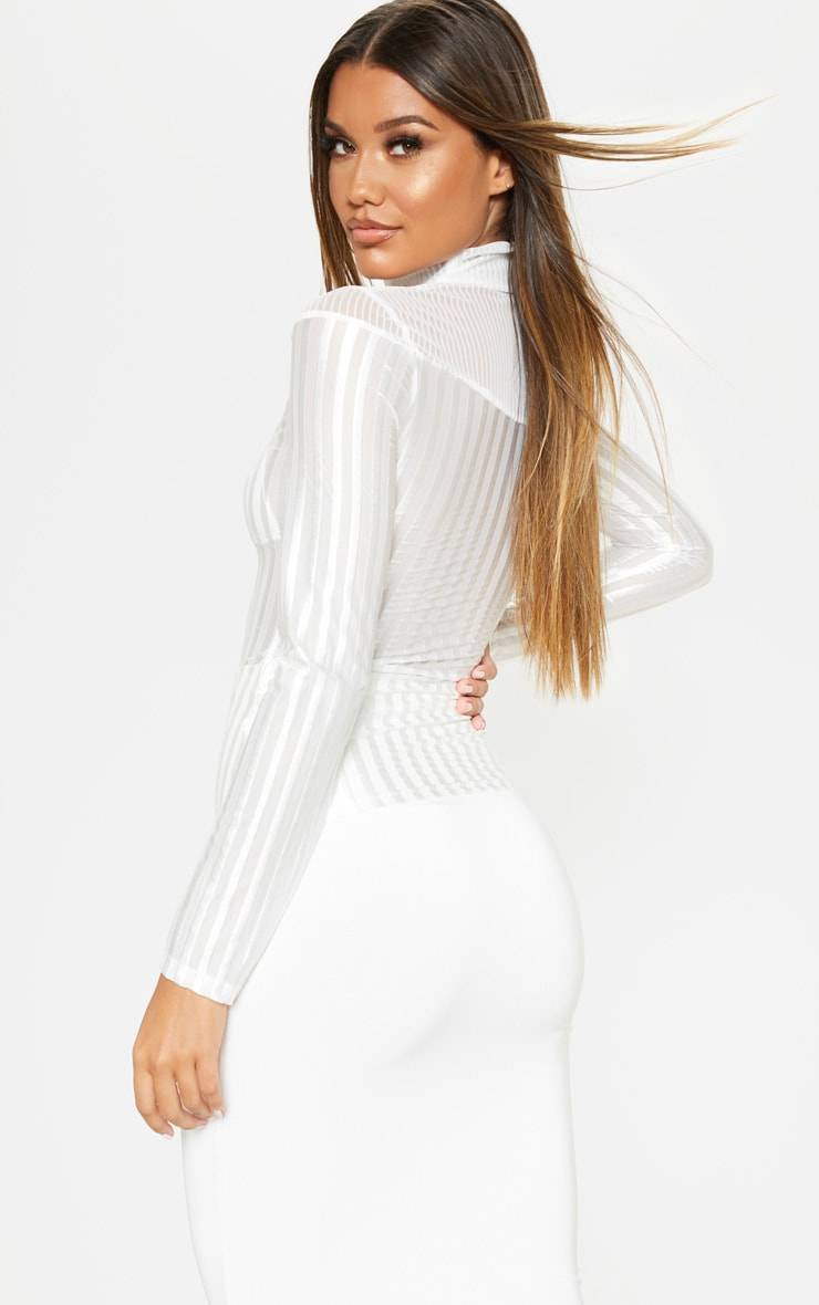 White Velvet Stripe Sheer Long Sleeve Top 2
