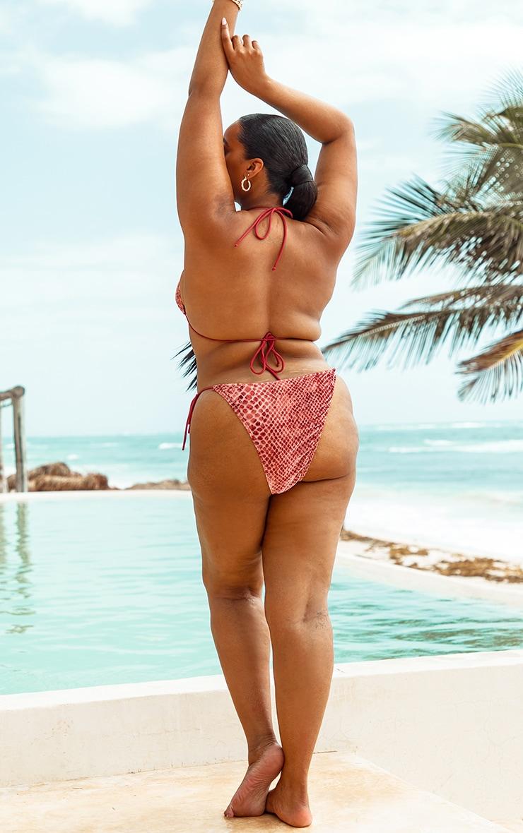 Plus Rose Devore Tie Side Bikini Bottoms 2