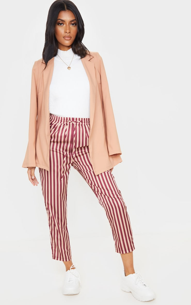Rust Stripe Casual Pants 1
