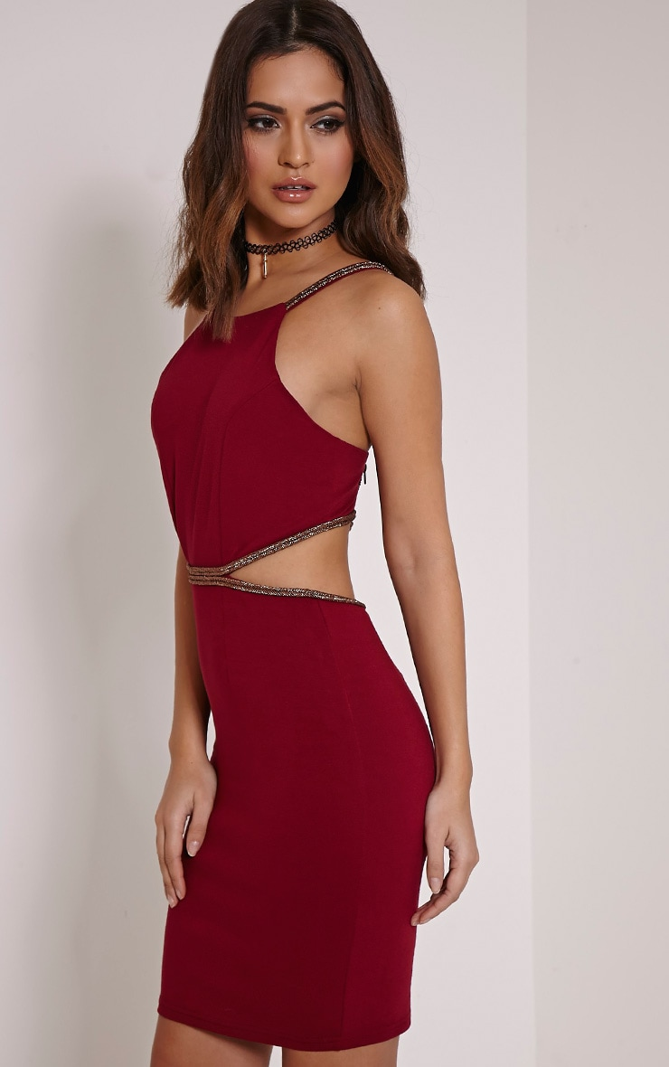 Sameena Burgundy Cut Out Mini Dress 3