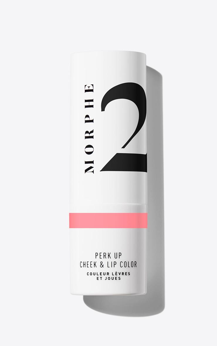 Morphe 2 Perk Up Cheek & Lip Color Pink Me Up 3