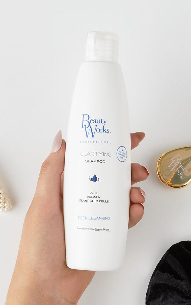 Beauty Works Clarifying Shampoo 250ml 1