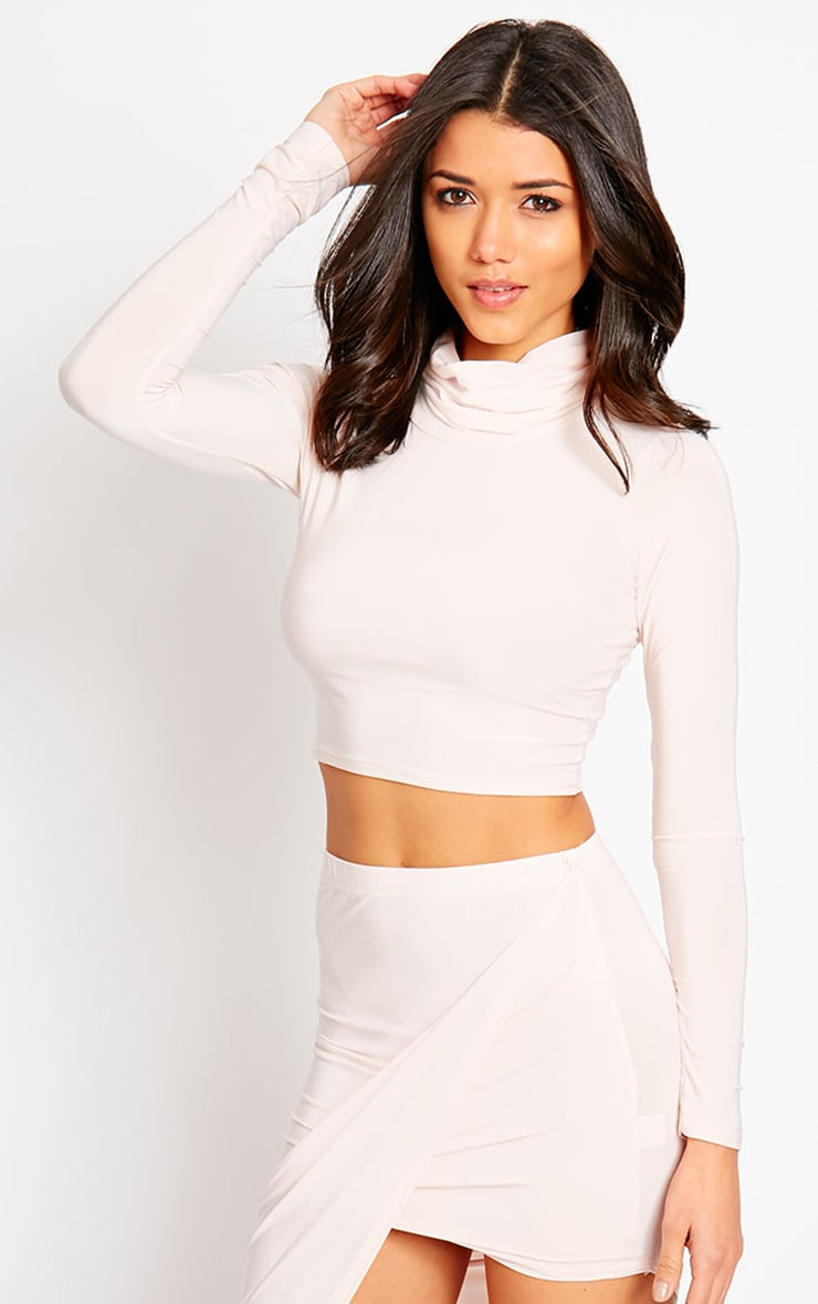Alba Nude Roll Neck Crop Top 4